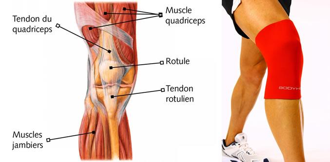 gel pour douleur genoux